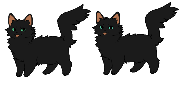 Juniper | Whitepaw's siblings try-outs by Daisynner