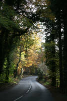 Autumn Road : stock by Ange1ica-Stock