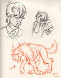 MWPP-era Remus Lupin designs by DeviDarkWolf