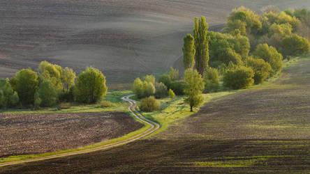 . . . by Alexey-Argentum