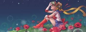 Sailor Moon Poland Facebook banner