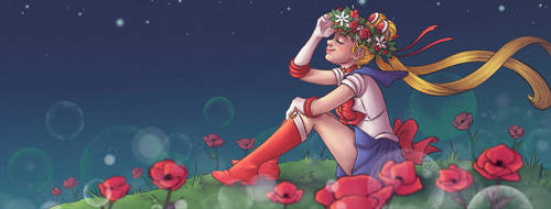 Sailor Moon Poland Facebook banner by Annorelka