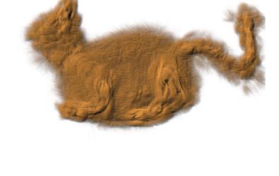 Cat Hair Mach2 by reddev1n