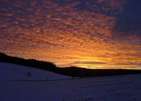 Sonnenuntergang im Schwarzwald by Shalesa
