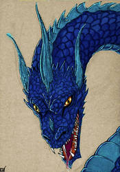 Blue Dragon by Nordtoemme