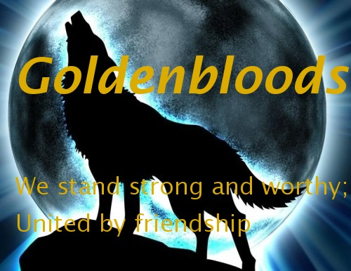 !BANNER VOTING! Goldenbloods_banner_five_by_mewsic_haznt_dyd_yet-d4cmuyh