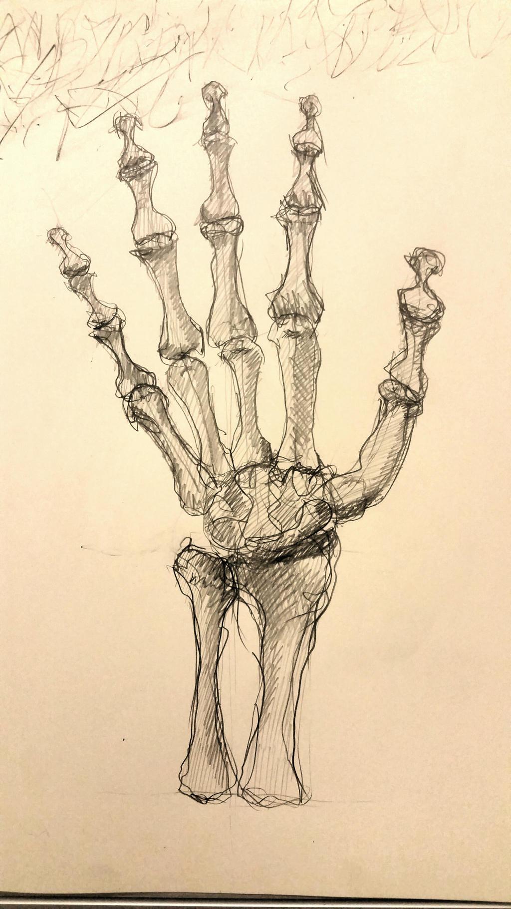 sketch by desenez88