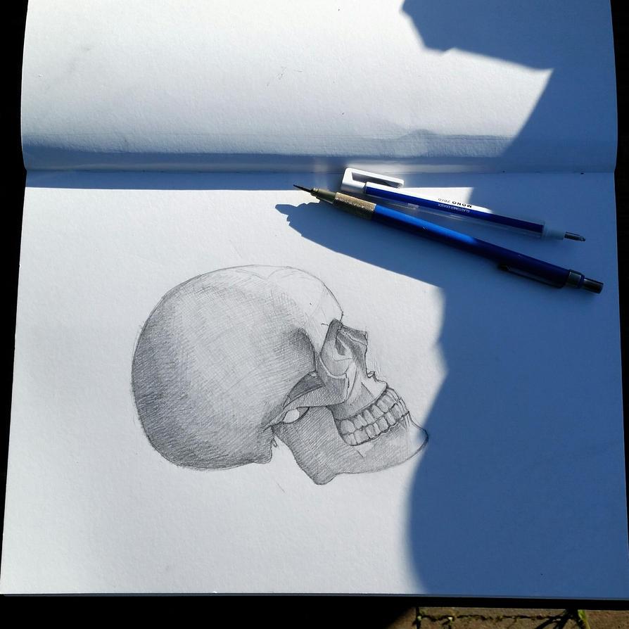 skull drawing by desenez88
