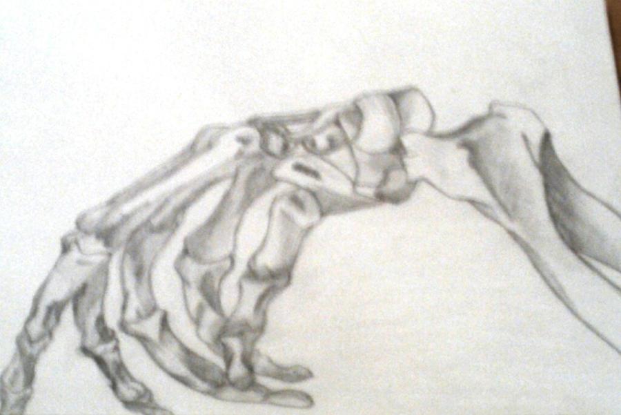 Skeleton Hand Drawing On Left Hand