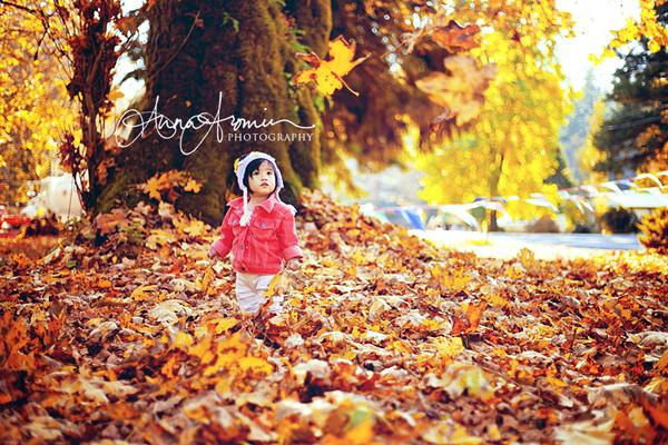 Golden Autumn by inktice