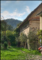 Yard of an old house by Pildik