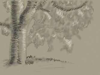 Tree Sketch by VATalbot