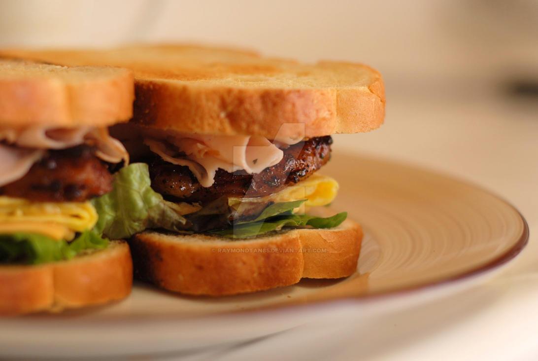 Sourdough Pork Sandwich by raymondtan85
