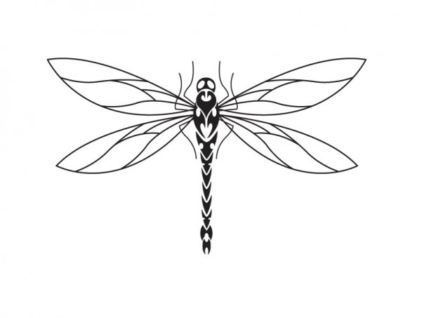 Dragonfly Tattoo Line Drawing : Dragonfly tattoo design by micma on deviantart