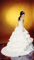 Bride wedding dress stock