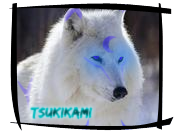 Little Tsukikami Real by Tsuki-Inukami