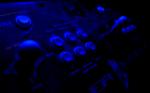 Killer Instinct Control Panel
