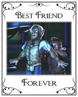 Shirt No.4 - Best Friend Forever by LeelaComstock
