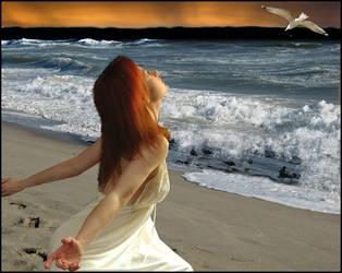 Dream Catcher by Lauraest