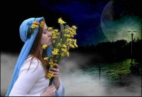 Twilight by Lauraest