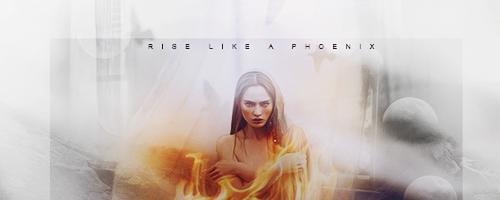 Phoenix by LittleMusa
