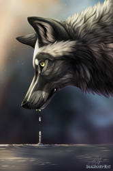 Drip drop by ImaginaryRat