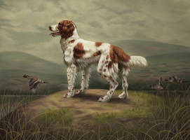 Springer Spaniel by ImaginaryRat