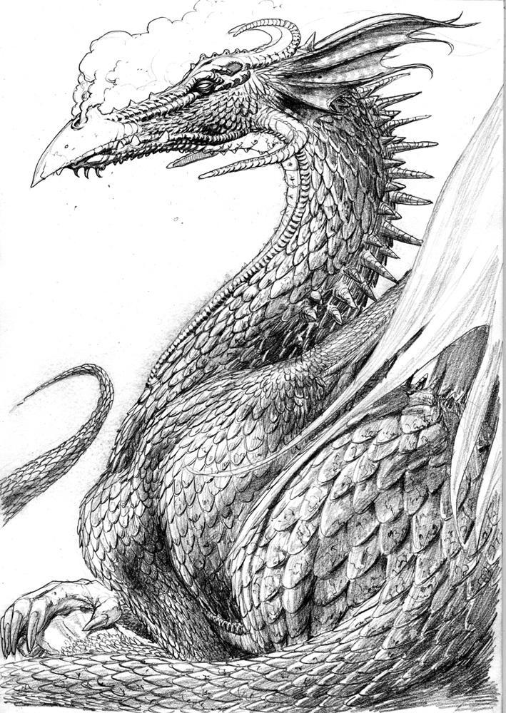 Thoughtful Dragon