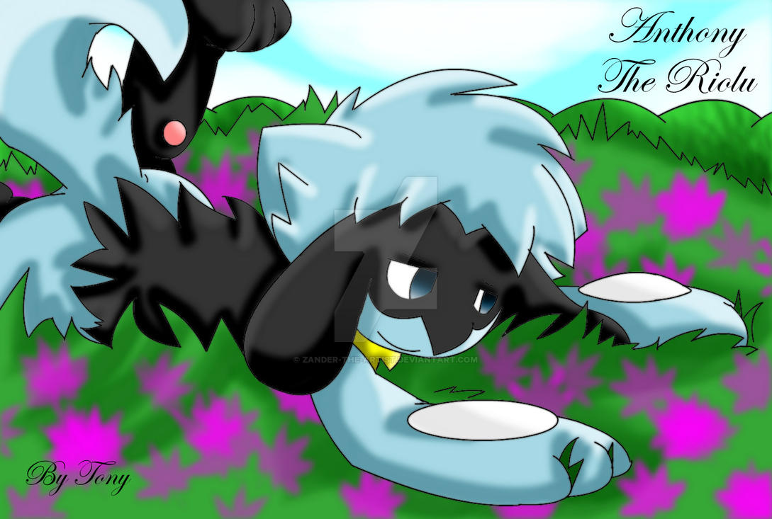 Anthony The Riolu by Zander-The-Artist