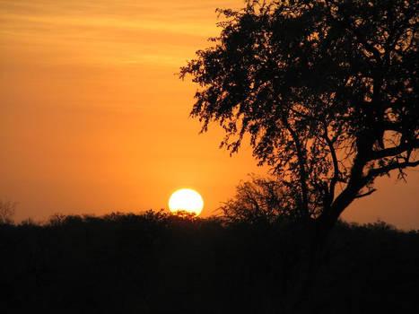 African Sunrise Background
