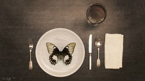 entomophagy by bcor