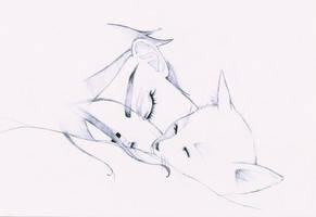 night's rest