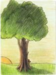 Sleeping Applejack under Tree - Sunset