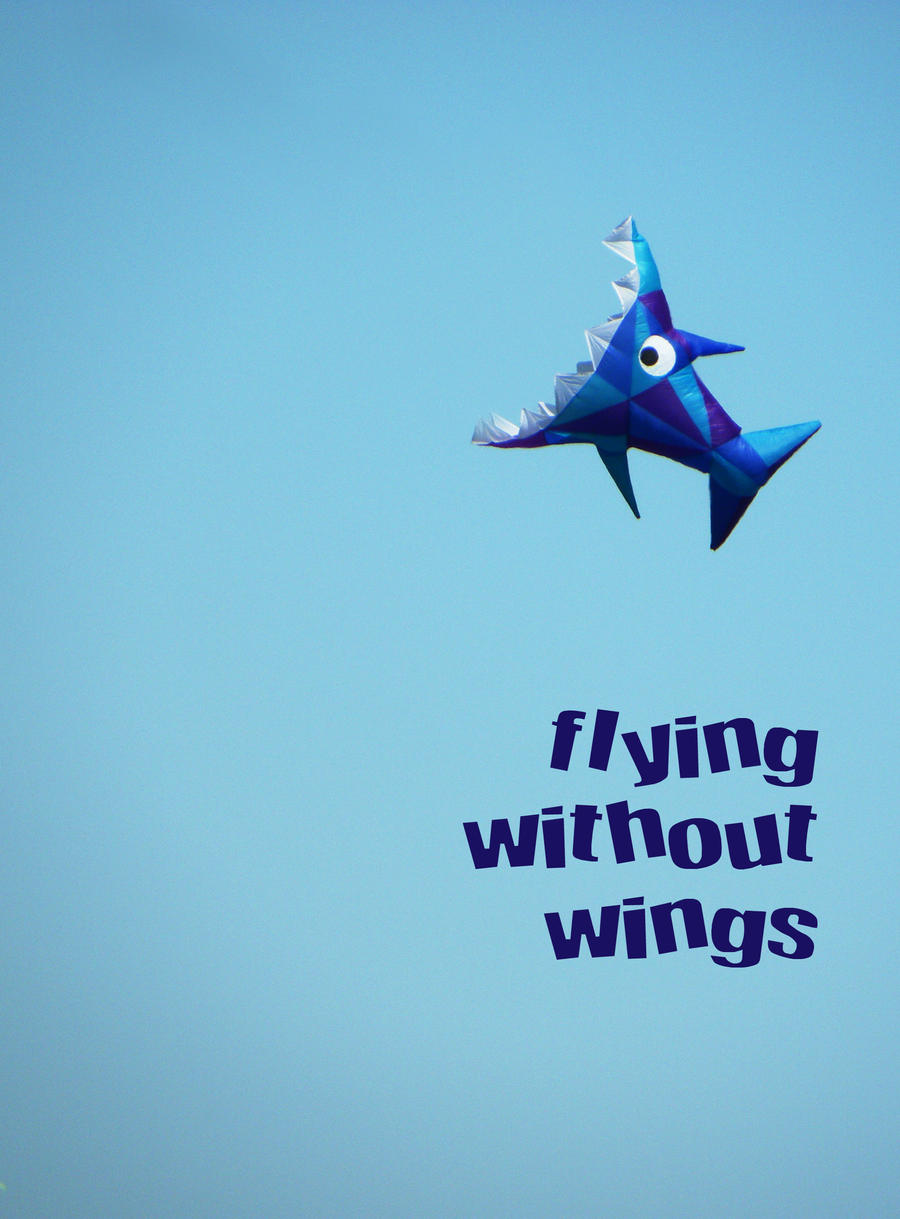 Flying Without Wings by bicyclegasoline on DeviantArt