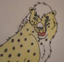 Matthias (Cheetah Practice)