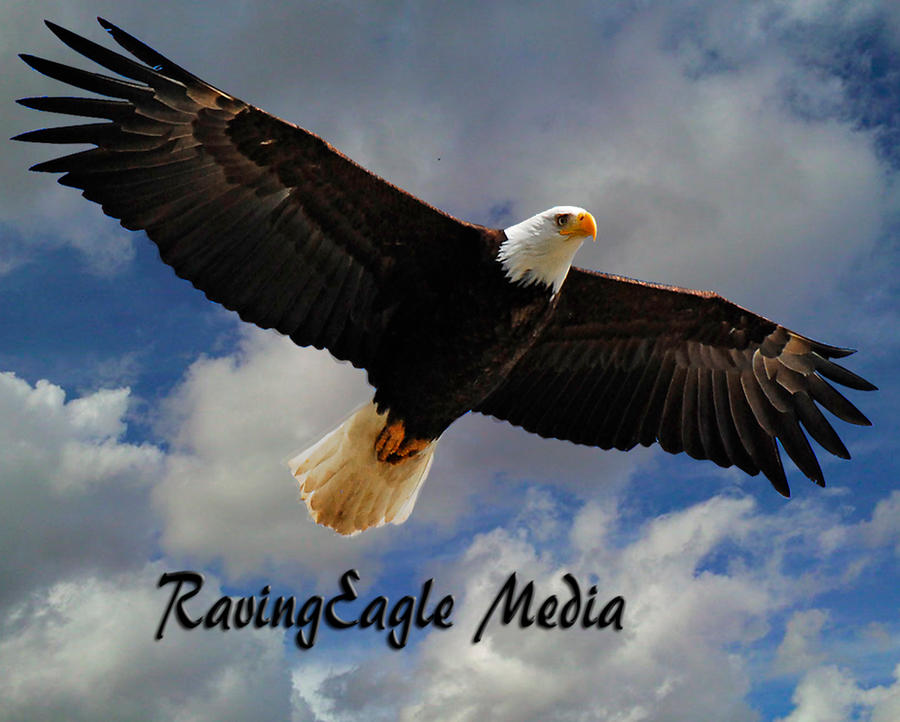 RavingEagle Media I.D. by RavingEagleMedia