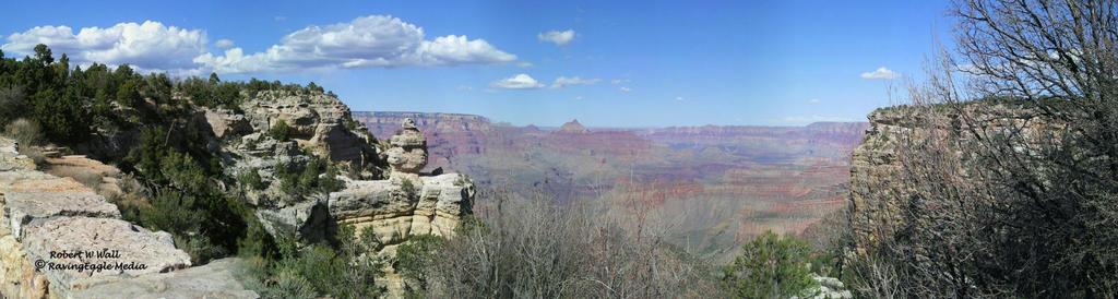 Grand Canyon Panoramic by RavingEagleMedia