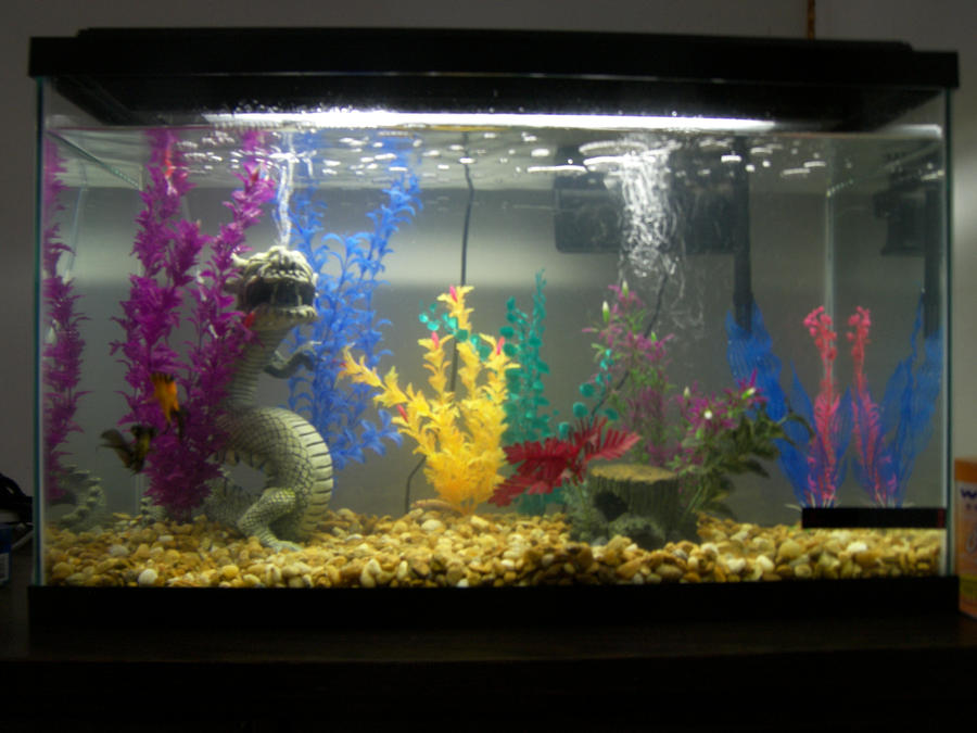Aquarium backgrounds 29 gallon freshwater saltwater for 29 gallon fish tank