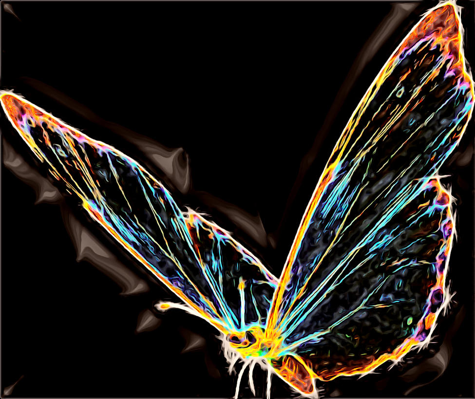 Shining Butterfly by Jewels-for-Angels on DeviantArt