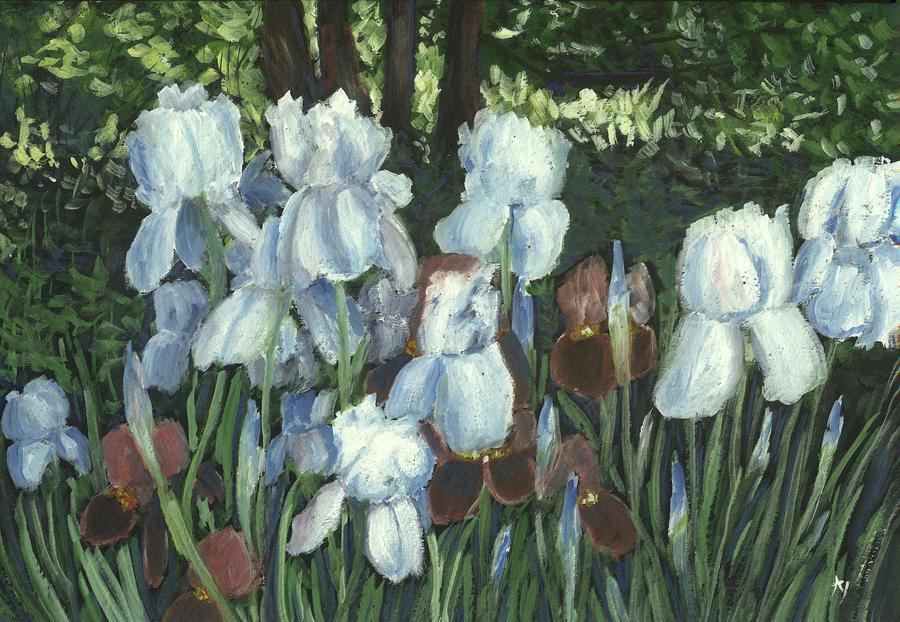 Irises by h-i-l-e-x