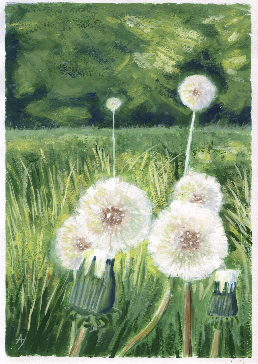 Dandelions by h-i-l-e-x