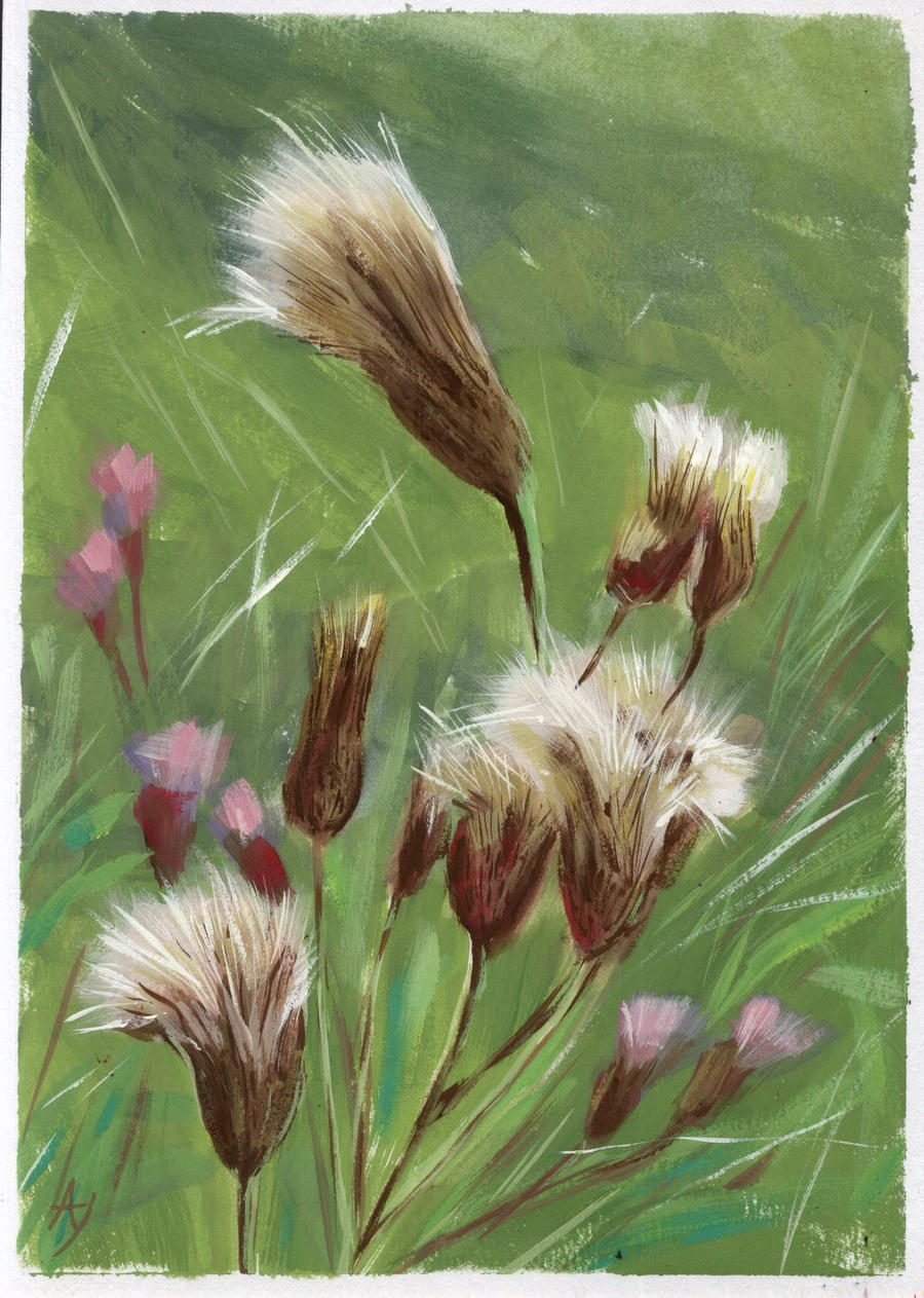 Prairie Thistle by h-i-l-e-x