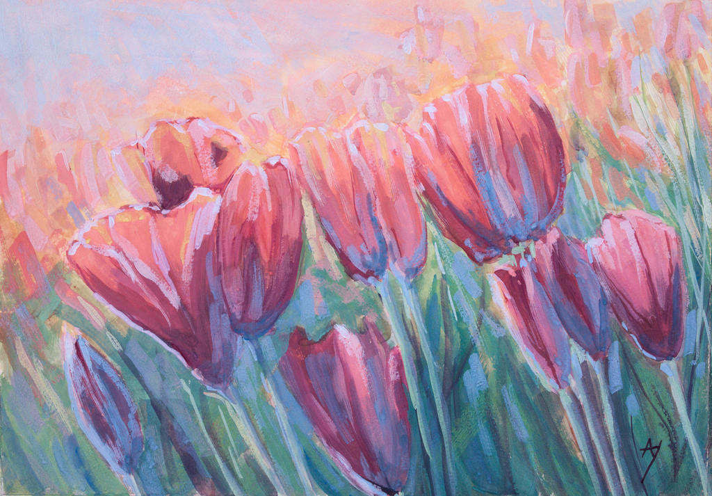 Tulips by h-i-l-e-x
