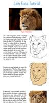 Lion Face Tutorial