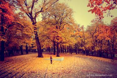 celicna jesen by m1rna