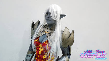Dark Elf 2 - Lineage by Edaine