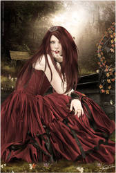 my secret garden by arianereis