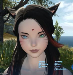 Kiri-Taiyaka's Profile Picture