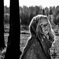 In The Wood by Vladimir-Serov