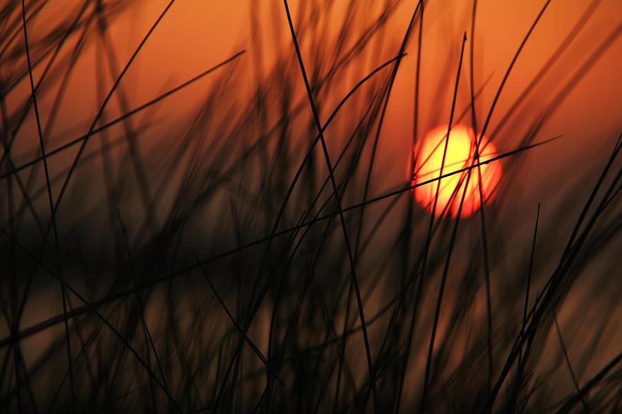 Sunset by rhiannonphillips